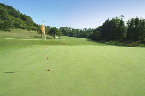 ゴルフコース 豪華と質素